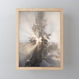 Winter Tree - Yellowstone Framed Mini Art Print