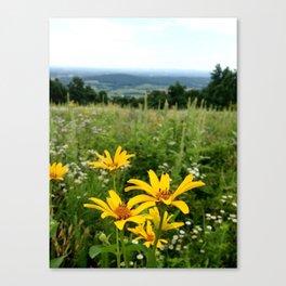 Virginia Flowers Canvas Print