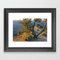 Treedom Framed Art Print