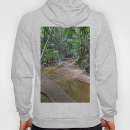 The Holy Spirit deep-forest river explorations in El Yunque rainforest PR Hoody