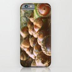 Acorns Slim Case iPhone 6s