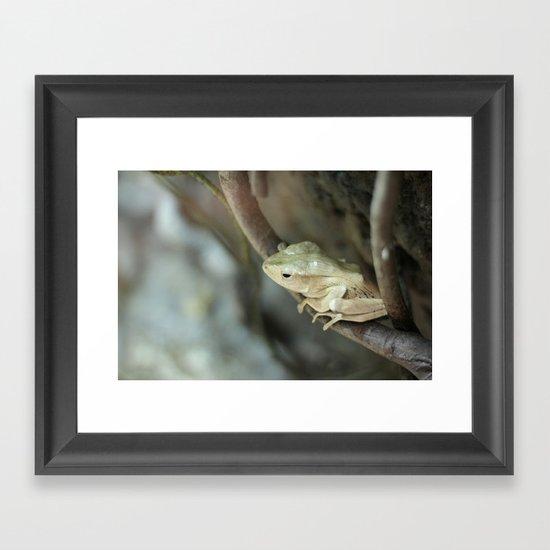 Froggy style Framed Art Print