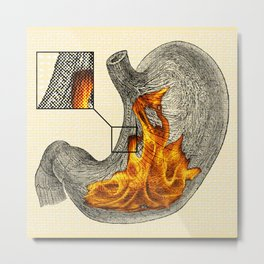 Fire In My Belly Metal Print