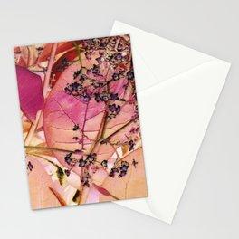 Spring 8 Stationery Cards