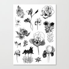 All the wild Canvas Print