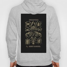 """""""Decapoda"""" from """"Art Forms of Nature"""" by Ernst Haeckel Hoody"""