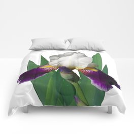 Violet and white Iris 'Wabash' Comforters