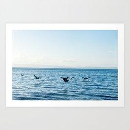 Flying Flock Art Print