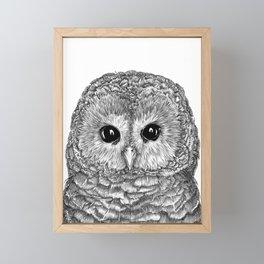 Tiny Owl Framed Mini Art Print