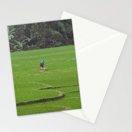 Rice Paddies in Kho Muong, Vietnam Stationery Cards