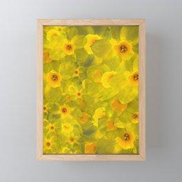 Narcissus bouquet Framed Mini Art Print