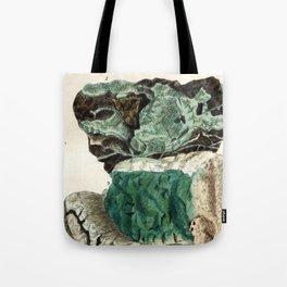 Vintage Mineralogy Illustration Tote Bag