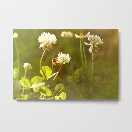 On Summer Afternoons Metal Print