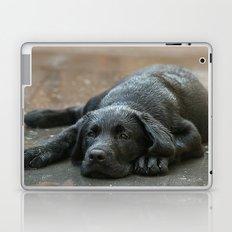 Labrador dog in the rain ! Laptop & iPad Skin