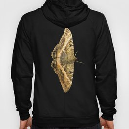 Black Witch Moth Hoody