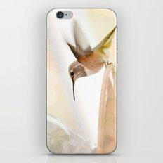 Hummingbird in flight iPhone & iPod Skin