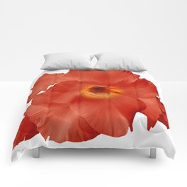 Sword Lily Red Yellow Comforters