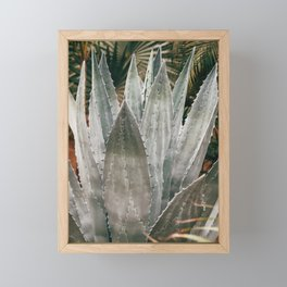 Deep Agave Framed Mini Art Print