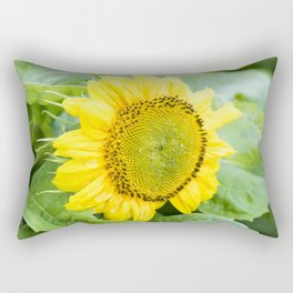 Teddy Bear Sunflower Bloom Rectangular Pillow