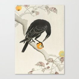 Crow eating persimmon Fruit - Vintage Japanese Woodblock Print Art Canvas Print