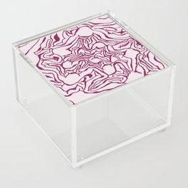 Cabbage Core Acrylic Box