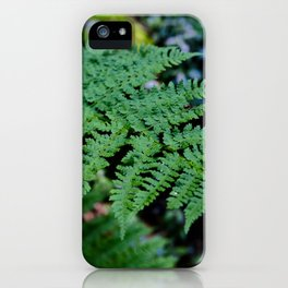 Fern Forest iPhone Case