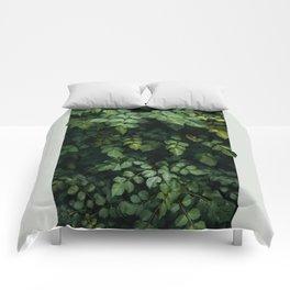 Growth Comforters