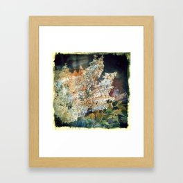 Vintage Bouquet Framed Art Print