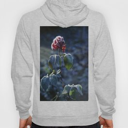Frosted Rose Hoody