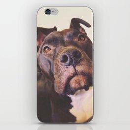 Macy iPhone Skin