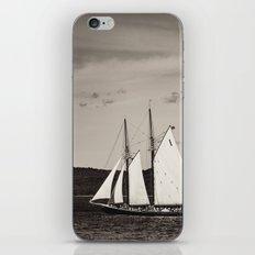 Sailing The Basin iPhone & iPod Skin