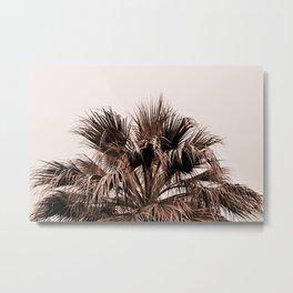 Palm tree top monochrome Metal Print