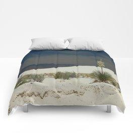 Desert Beauty Comforters
