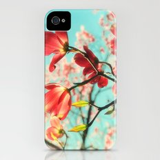 Spring dogwood blossoms iPhone (4, 4s) Slim Case