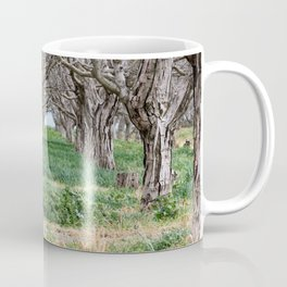 Nature - Crow's Landing Trees 2 Coffee Mug