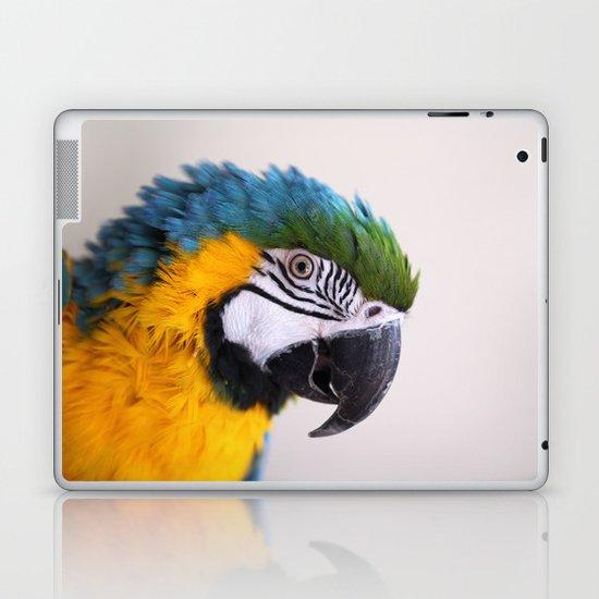 Blue-and-yellow macaw Laptop & iPad Skin