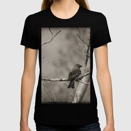 The Quest:  Black and White Bird Antiqued T-shirt