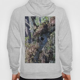 The Mysterious Inhabitant Hoody