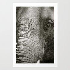 L'Éléphant Art Print