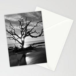 Tree at Sunrise Stationery Cards