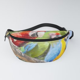Curious macaws Fanny Pack