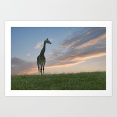 Early morning sunrise on the savanna Art Print