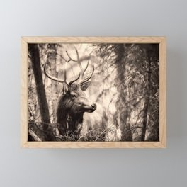 Watchful Elk Framed Mini Art Print