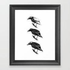 Raven Study Framed Art Print