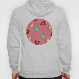 Bubblegum Diamonds Hoody