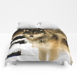 Wolves in The Snow Comforters