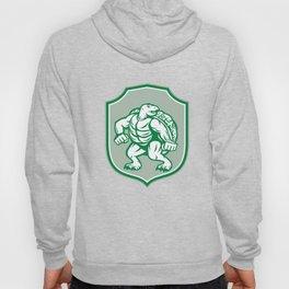 Green Turtle Fighter Mascot Shield Retro Hoody