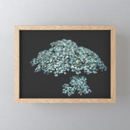 Botanical Still Life Photography Tiny Flowers Framed Mini Art Print
