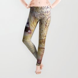 The many faces of Squirrel 5 Leggings