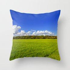 Rice Field II Throw Pillow